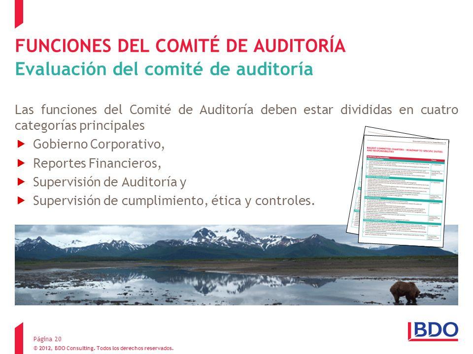 FUNCIONES DEL COMITÉ DE AUDITORÍA Evaluación del comité de auditoría Las funciones del Comité de Auditoría deben estar divididas en cuatro categorías