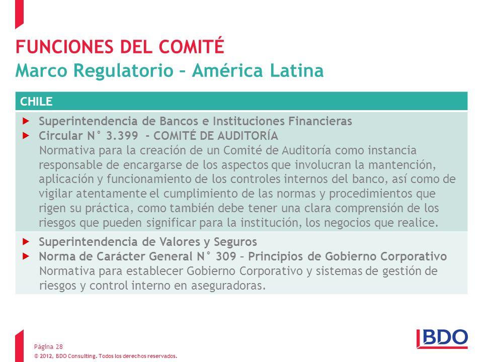 © 2012, BDO Consulting. Todos los derechos reservados. FUNCIONES DEL COMITÉ Marco Regulatorio – América Latina Página 28 CHILE Superintendencia de Ban