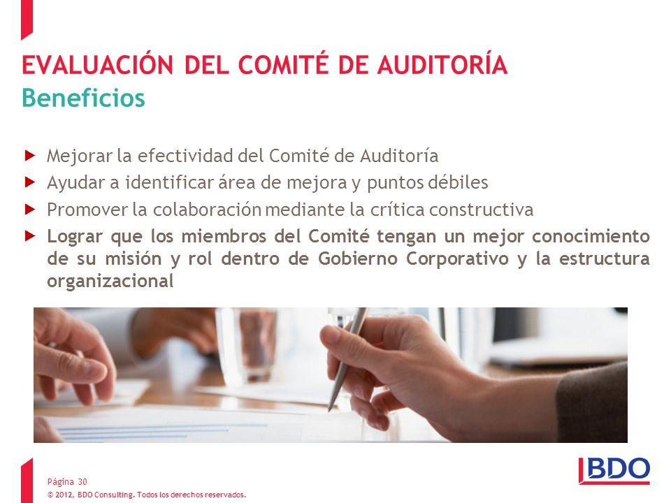 EVALUACIÓN DEL COMITÉ DE AUDITORÍA Beneficios Mejorar la efectividad del Comité de Auditoría Ayudar a identificar área de mejora y puntos débiles Prom