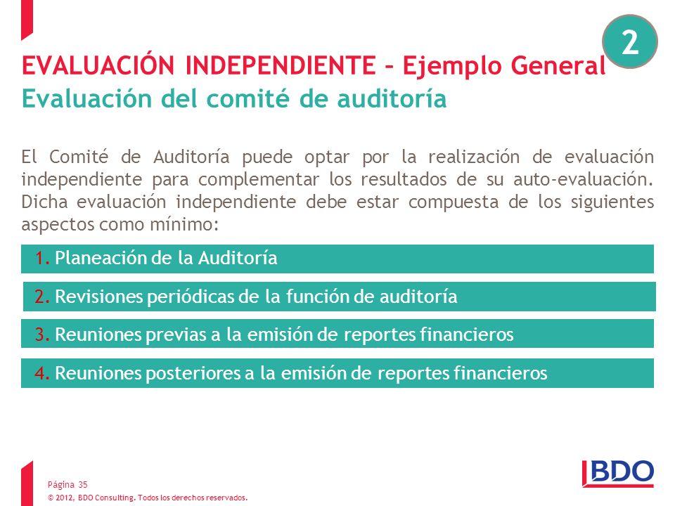 © 2012, BDO Consulting. Todos los derechos reservados. EVALUACIÓN INDEPENDIENTE – Ejemplo General Evaluación del comité de auditoría El Comité de Audi