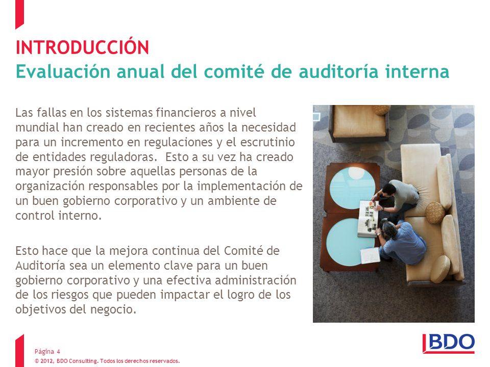 © 2012, BDO Consulting. Todos los derechos reservados. INTRODUCCIÓN Evaluación anual del comité de auditoría interna Las fallas en los sistemas financ