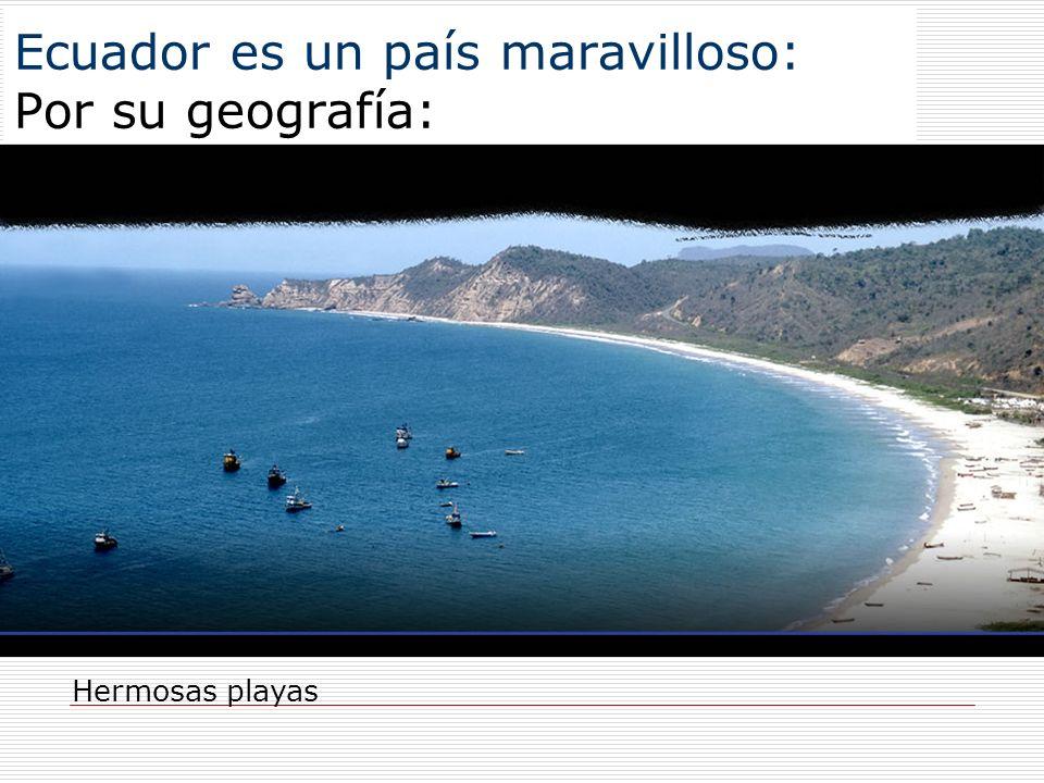 Ecuador es un país maravilloso: Por su geografía: Hermosas playas