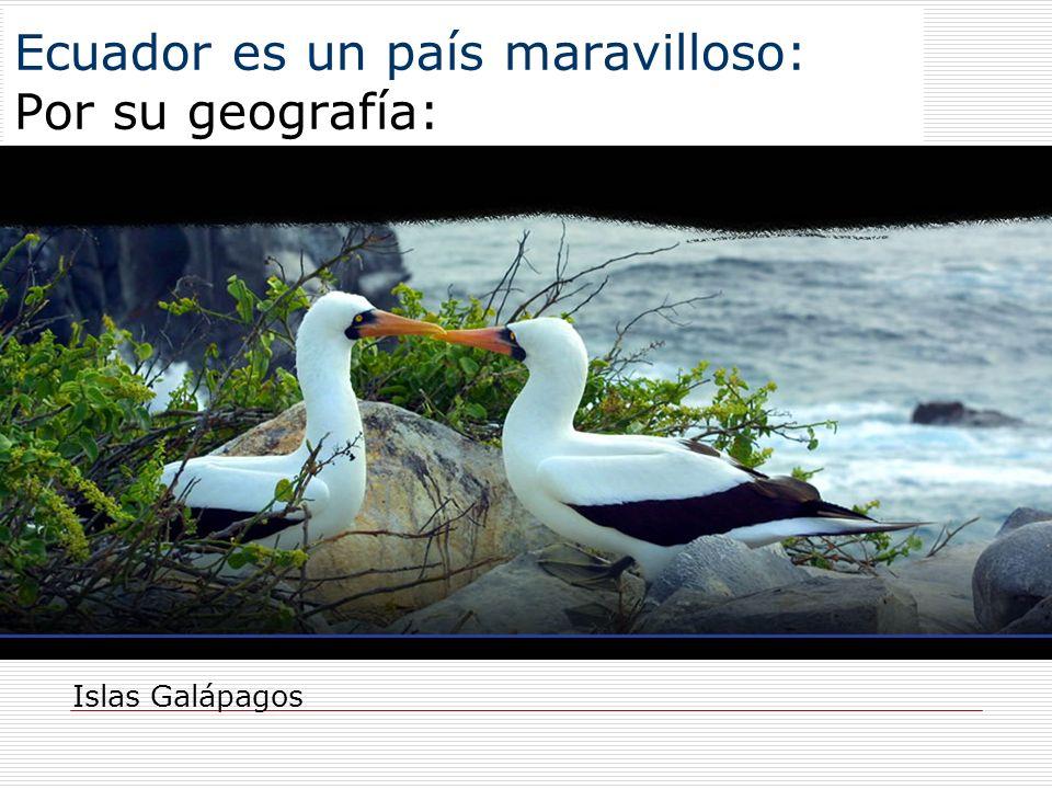 Ecuador es un país maravilloso: Por su geografía: Islas Galápagos