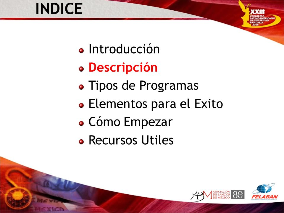 INDICE Introducción Descripción Tipos de Programas Elementos para el Exito Cómo Empezar Recursos Utiles