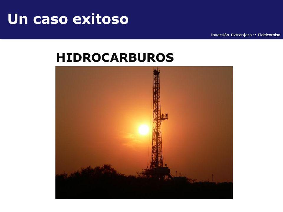 Inversión Extranjera :: Fideicomiso Un caso exitoso HIDROCARBUROS
