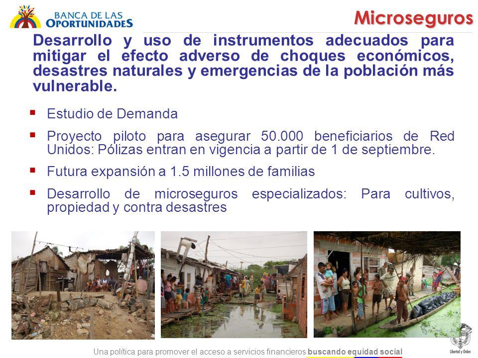 Una política para promover el acceso a servicios financieros buscando equidad social Desarrollo y uso de instrumentos adecuados para mitigar el efecto