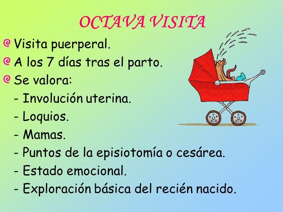 OCTAVA VISITA Visita puerperal. A los 7 días tras el parto. Se valora: - Involución uterina. - Loquios. - Mamas. - Puntos de la episiotomía o cesárea.