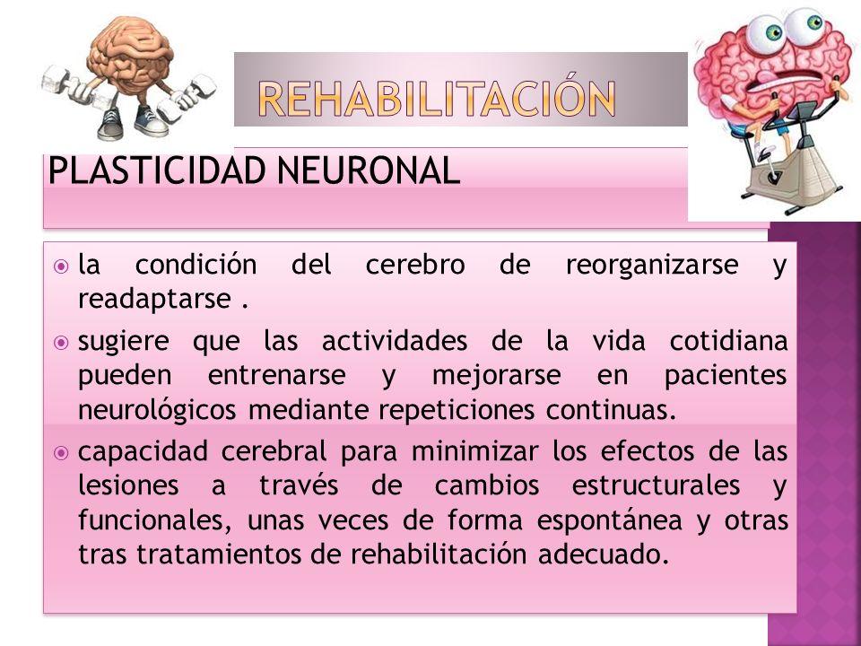 PLASTICIDAD NEURONAL la condición del cerebro de reorganizarse y readaptarse. sugiere que las actividades de la vida cotidiana pueden entrenarse y mej