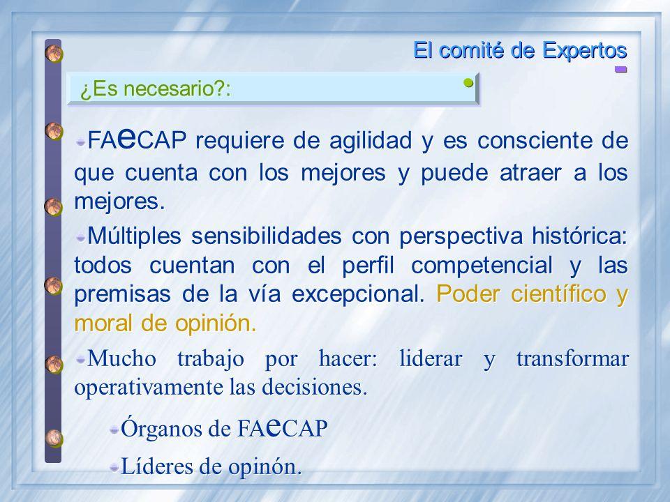 ¿Es necesario?: El comité de Expertos FA e CAP requiere de agilidad y es consciente de que cuenta con los mejores y puede atraer a los mejores. Múltip