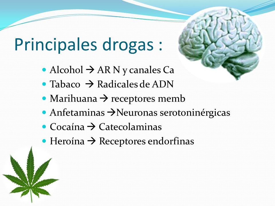 Principales drogas : Alcohol AR N y canales Ca Tabaco Radicales de ADN Marihuana receptores memb Anfetaminas Neuronas serotoninérgicas Cocaína Catecolaminas Heroína Receptores endorfinas