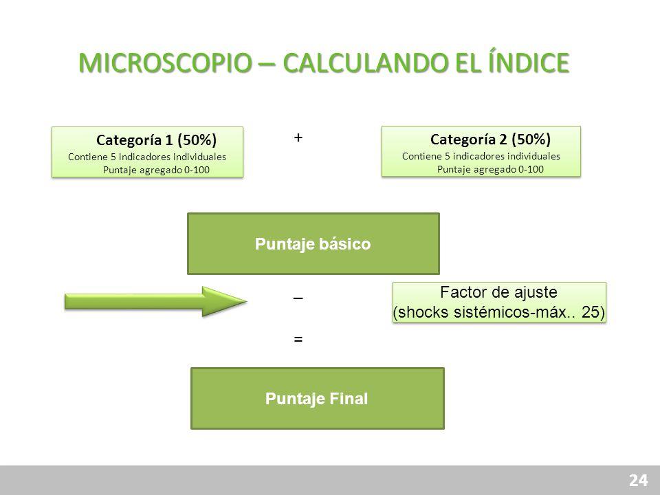 24 MICROSCOPIO – CALCULANDO EL ÍNDICE Categoría 2 (50%) Contiene 5 indicadores individuales Puntaje agregado 0-100 Categoría 2 (50%) Contiene 5 indica