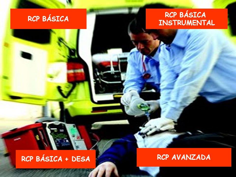 RCP BÁSICA RCP BÁSICA + DESA RCP BÁSICA INSTRUMENTAL RCP AVANZADA