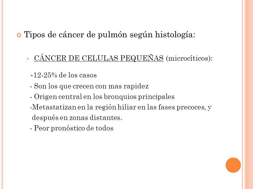 Tipos de cáncer de pulmón según histología: CÁNCER DE CELULAS PEQUEÑAS (microcíticos): - 12-25% de los casos - Son los que crecen con mas rapidez - Or