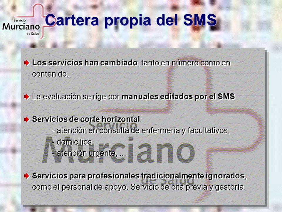 Los servicios han cambiado, tanto en número como en contenido. La evaluación se rige por manuales editados por el SMS Servicios de corte horizontal: -