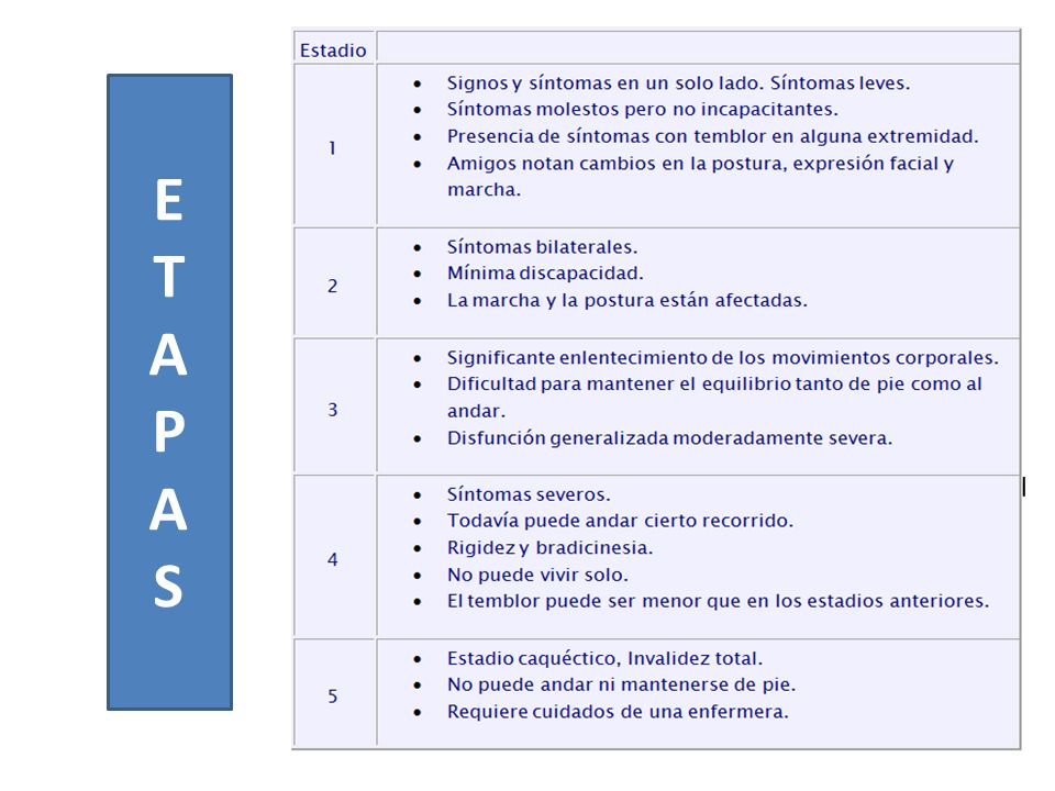 ETAPASETAPAS