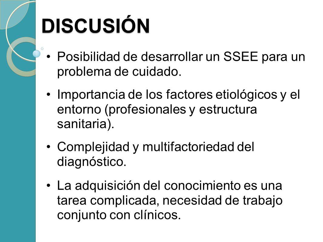 Posibilidad de desarrollar un SSEE para un problema de cuidado. Importancia de los factores etiológicos y el entorno (profesionales y estructura sanit