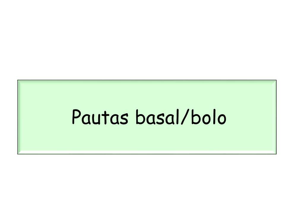 Pautas basal/bolo