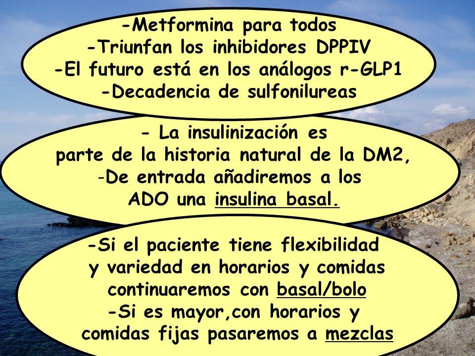 - La insulinización es parte de la historia natural de la DM2, -De entrada añadiremos a los ADO una insulina basal. -Si el paciente tiene flexibilidad