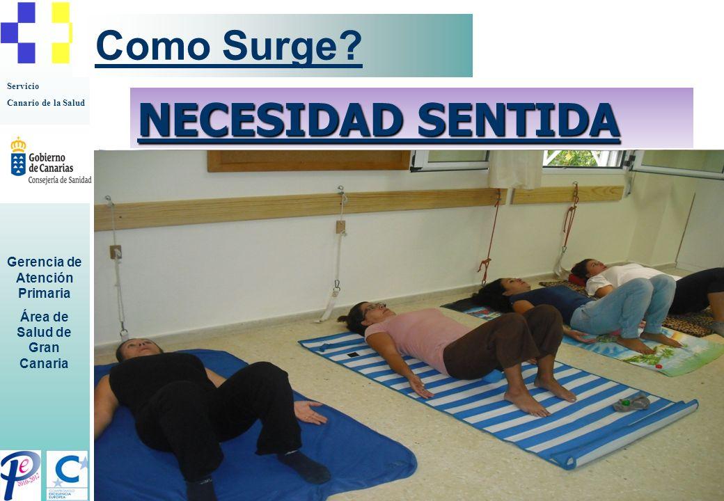 Servicio Canario de la Salud Gerencia de Atención Primaria Área de Salud de Gran Canaria Como Surge? NECESIDAD SENTIDA