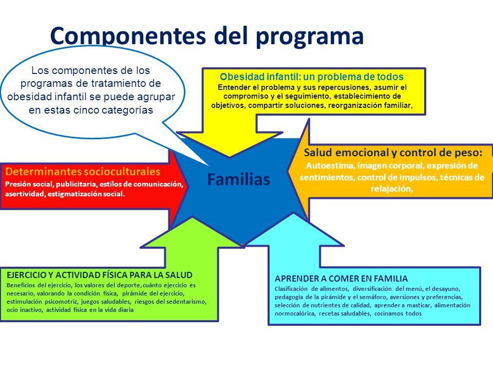 Familias Activas Familias Activas Componentes del programa Obesidad infantil: un problema de todos Entender el problema y sus repercusiones, asumir el