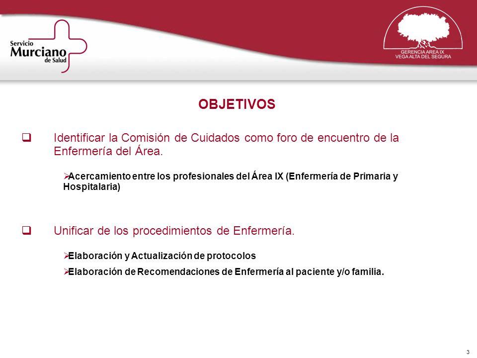3 OBJETIVOS Identificar la Comisión de Cuidados como foro de encuentro de la Enfermería del Área. Acercamiento entre los profesionales del Área IX (En