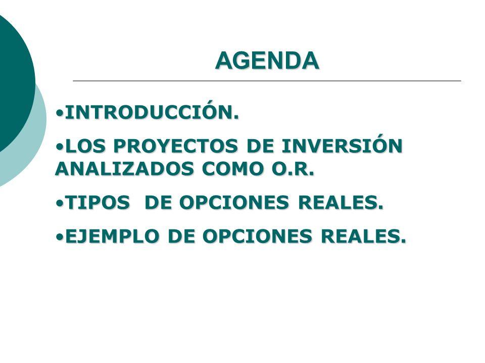 AGENDA INTRODUCCIÓN.INTRODUCCIÓN. LOS PROYECTOS DE INVERSIÓN ANALIZADOS COMO O.R.LOS PROYECTOS DE INVERSIÓN ANALIZADOS COMO O.R. TIPOS DE OPCIONES REA