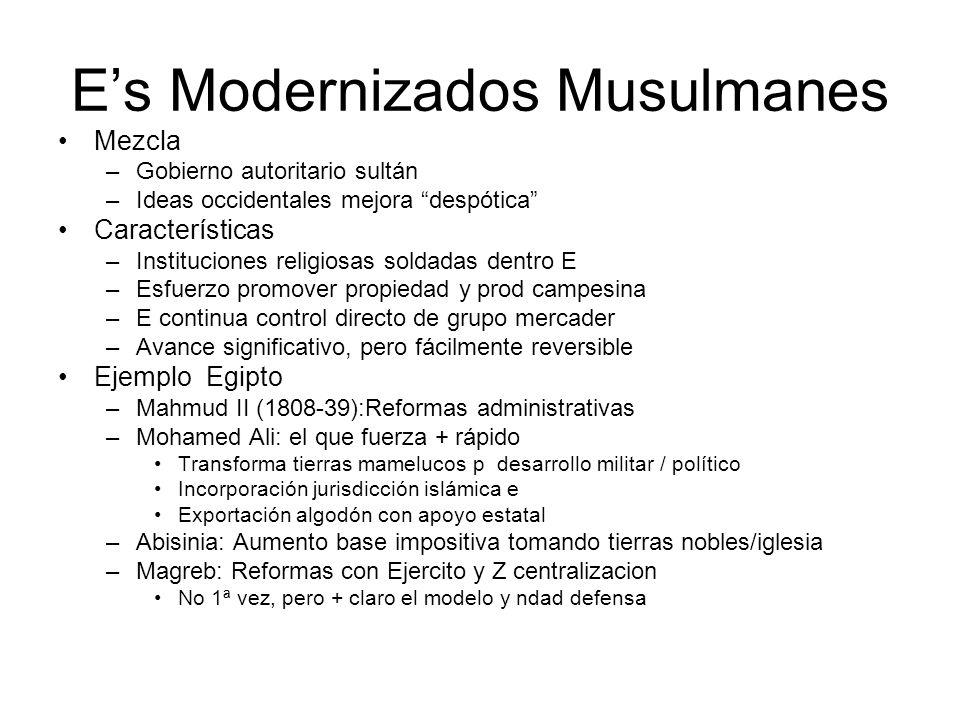 Es Modernizados Musulmanes Mezcla –Gobierno autoritario sultán –Ideas occidentales mejora despótica Características –Instituciones religiosas soldadas