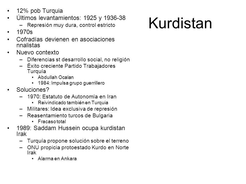 Kurdistan 12% pob Turquia Últimos levantamientos: 1925 y 1936-38 –Represión muy dura, control estricto 1970s Cofradías devienen en asociaciones nnalistas Nuevo contexto –Diferencias st desarrollo social, no religión –Éxito creciente Partido Trabajadores Turquía Abdullah Ocalan 1984: Impulsa grupo guerrillero Soluciones.