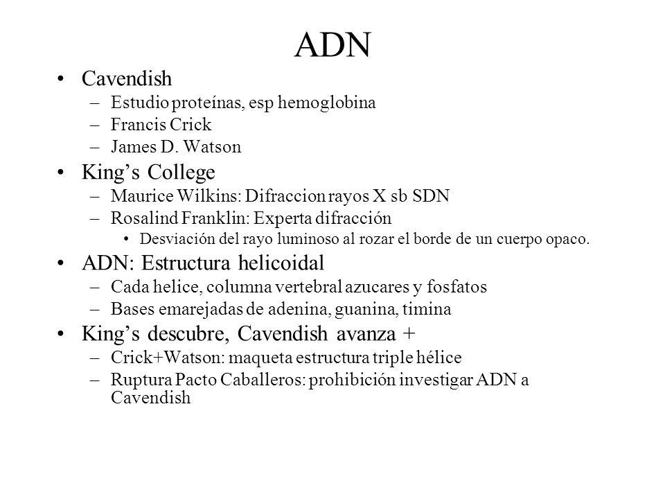 ADN Cavendish –Estudio proteínas, esp hemoglobina –Francis Crick –James D. Watson Kings College –Maurice Wilkins: Difraccion rayos X sb SDN –Rosalind