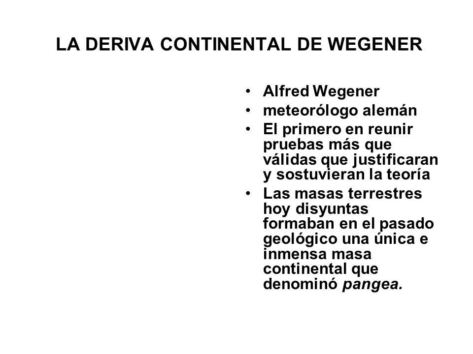 LA DERIVA CONTINENTAL DE WEGENER Alfred Wegener meteorólogo alemán El primero en reunir pruebas más que válidas que justificaran y sostuvieran la teor