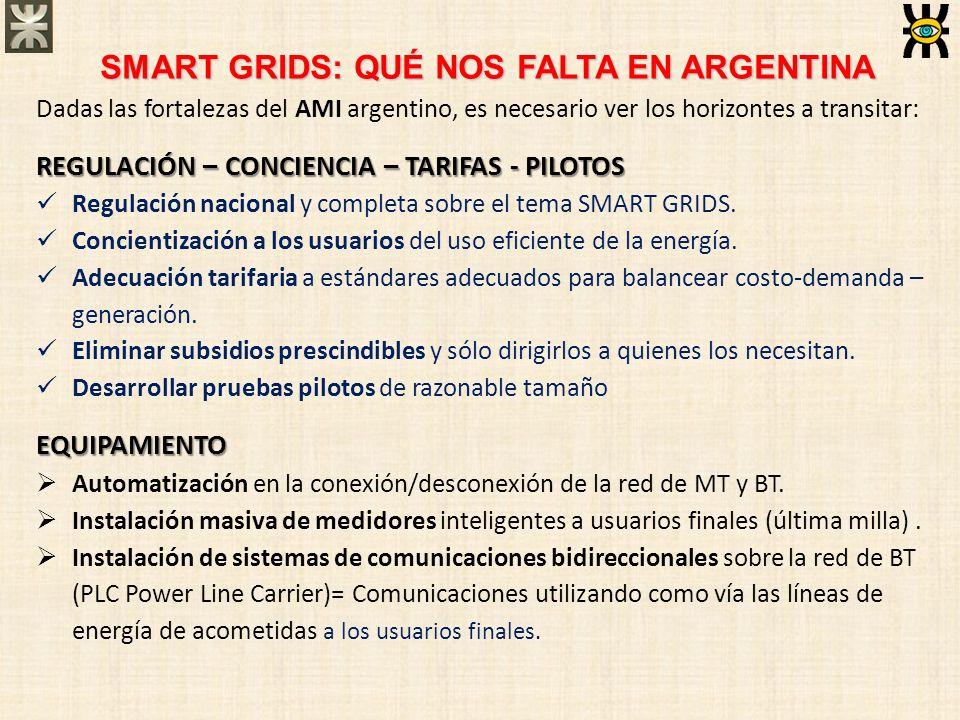 SMART GRIDS: QUÉ NOS FALTA EN ARGENTINA Dadas las fortalezas del AMI argentino, es necesario ver los horizontes a transitar: REGULACIÓN – CONCIENCIA –