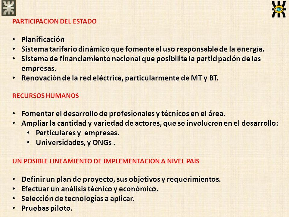 PARTICIPACION DEL ESTADO Planificación Sistema tarifario dinámico que fomente el uso responsable de la energía. Sistema de financiamiento nacional que