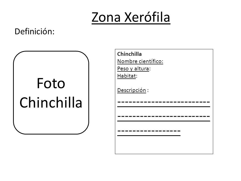 Zona Xerófila Definición: Chinchilla Nombre científico: Peso y altura: Habitat: Descripción : ------------------------- ------------------------- ----------------- Foto Chinchilla