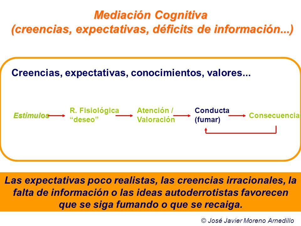 Creencias, expectativas, conocimientos, valores... Mediación Cognitiva (creencias, expectativas, déficits de información...) Las expectativas poco rea