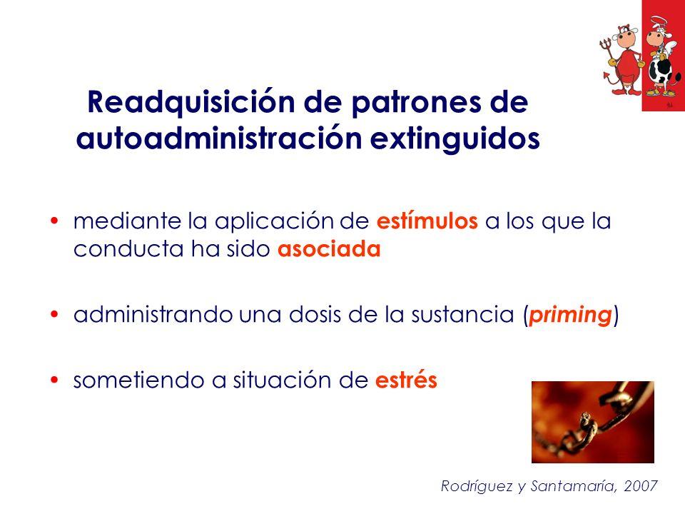 mediante la aplicación de estímulos a los que la conducta ha sido asociada administrando una dosis de la sustancia ( priming ) sometiendo a situación