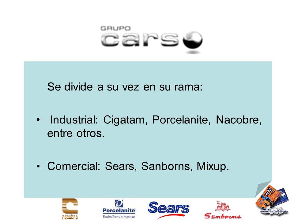 Se divide a su vez en su rama: Industrial: Cigatam, Porcelanite, Nacobre, entre otros. Comercial: Sears, Sanborns, Mixup.