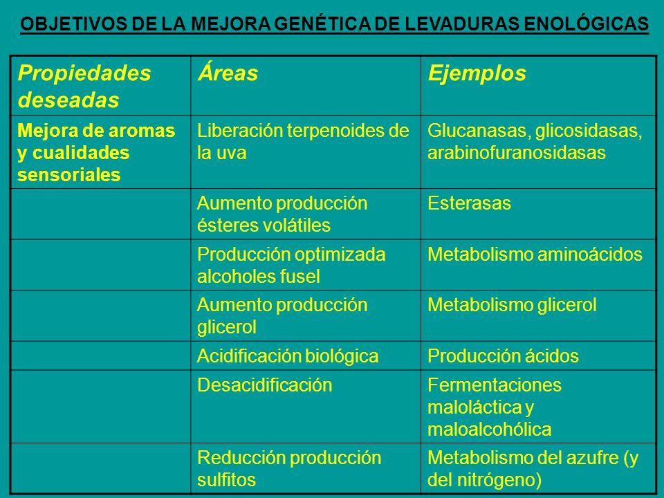Propiedades deseadas ÁreasEjemplos Mejora de aromas y cualidades sensoriales Liberación terpenoides de la uva Glucanasas, glicosidasas, arabinofuranos