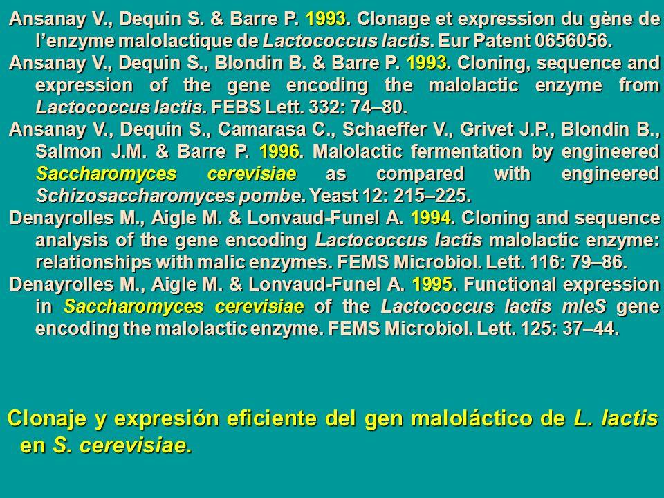 Ansanay V., Dequin S. & Barre P. 1993. Clonage et expression du gène de lenzyme malolactique de Lactococcus lactis. Eur Patent 0656056. Ansanay V., De