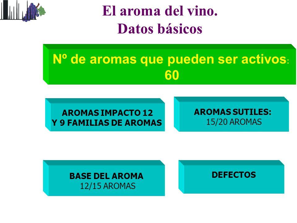 El aroma del vino. Datos básicos Nº de aromas que pueden ser activos : 60 BASE DEL AROMA 12/15 AROMAS AROMAS SUTILES: 15/20 AROMAS AROMAS IMPACTO 12 Y