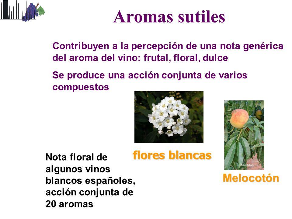 Aromas sutiles flores blancas Melocotón Contribuyen a la percepción de una nota genérica del aroma del vino: frutal, floral, dulce Se produce una acci