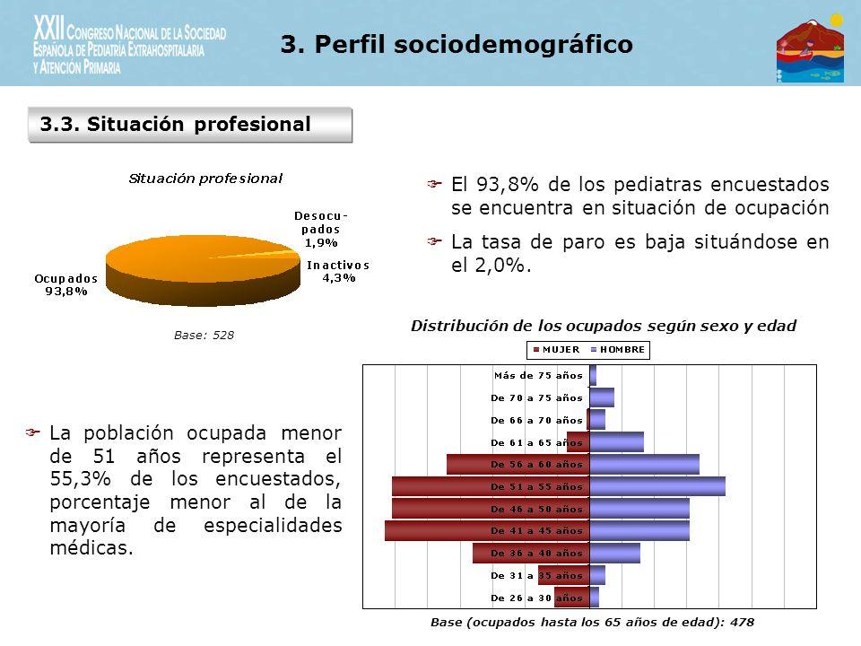 3. Perfil sociodemográfico 3.3.
