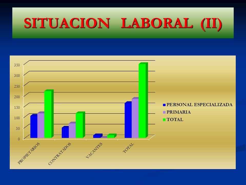 SITUACION LABORAL (II)