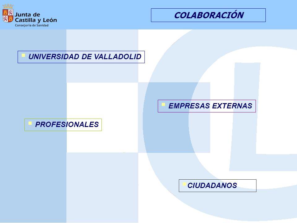 COLABORACIÓN CIUDADANOS UNIVERSIDAD DE VALLADOLID EMPRESAS EXTERNAS PROFESIONALES