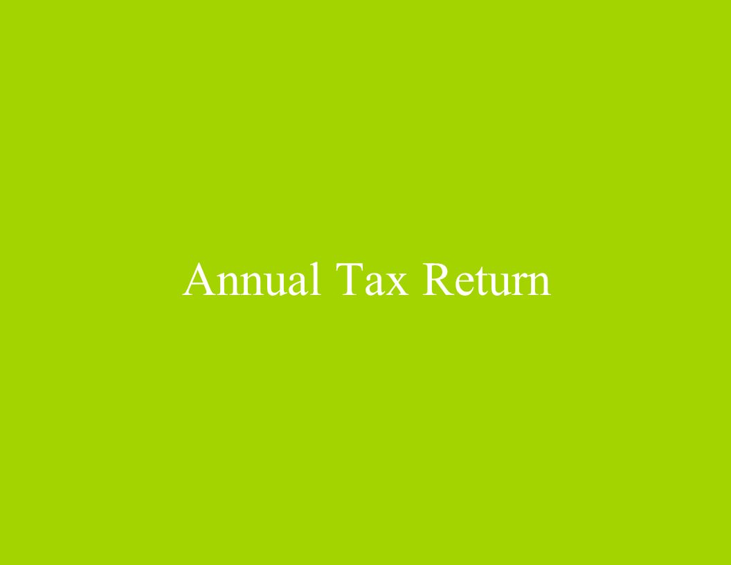 Annual Tax Return