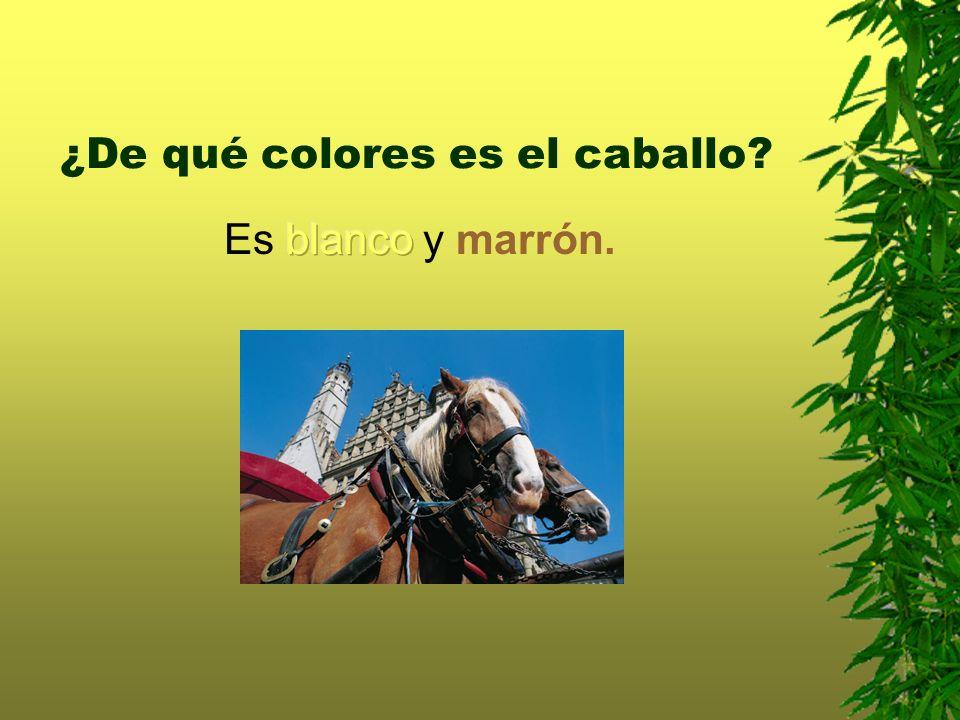 ¿De qué colores es el caballo?