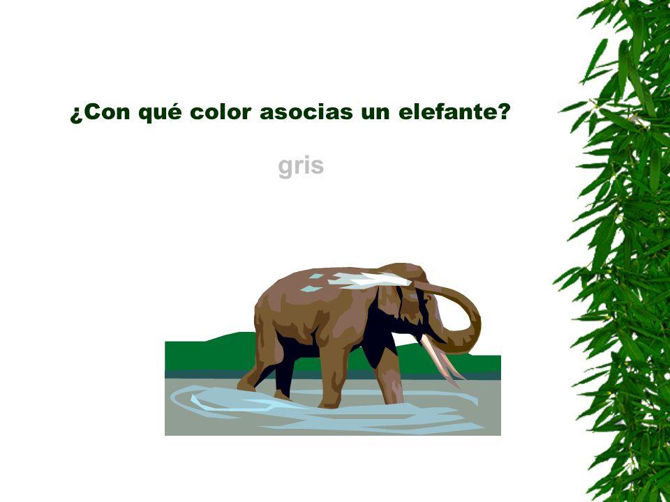 ¿Con qué color asocias un elefante? gris