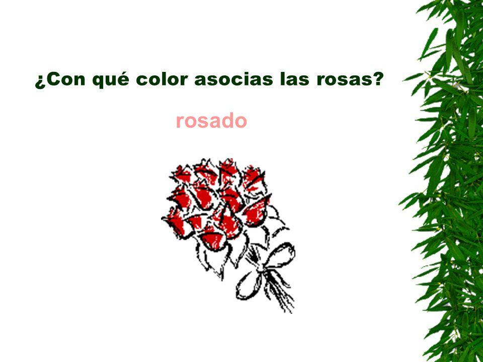 ¿Con qué color asocias las rosas? rosado