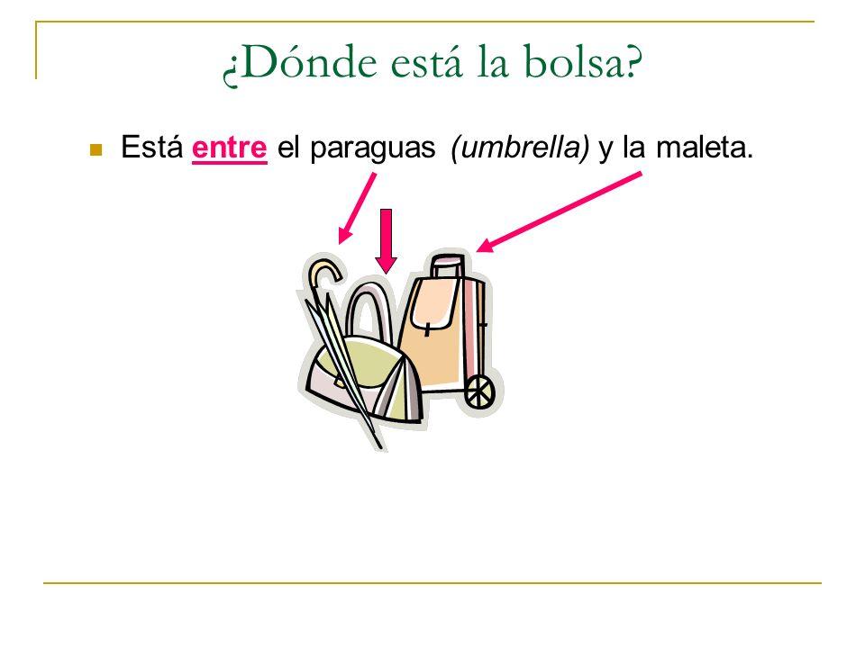 ¿Dónde está la bolsa? Está entre el paraguas (umbrella) y la maleta.