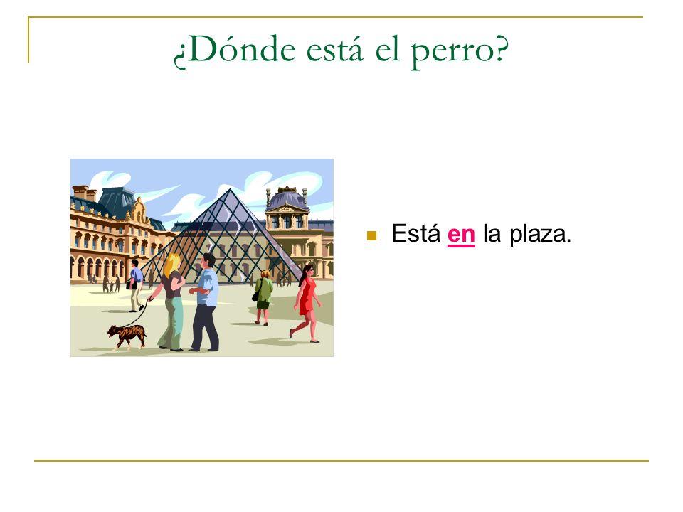 ¿Dónde está el perro? Está en la plaza.