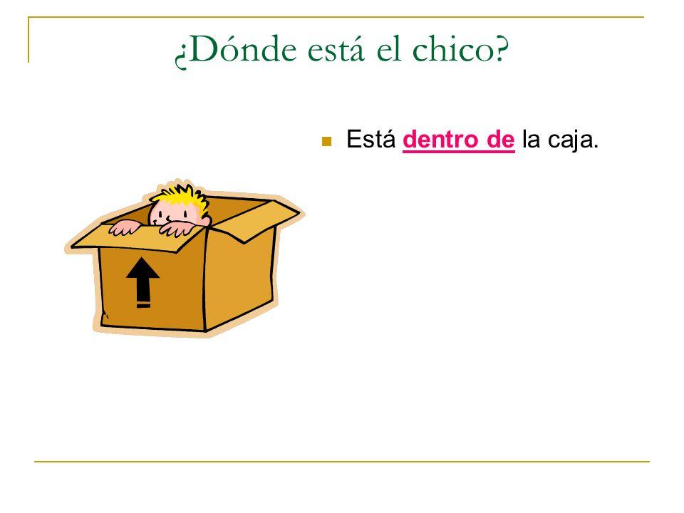 ¿Dónde está el chico? Está dentro de la caja.